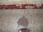 polvo en una alfombra oriental separado antes de sumergir en el agua